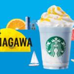 star_kanagawa_1